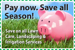 Piggy bank on lawn - save on spring lawn care service contracts